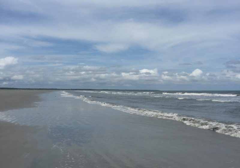 Can't Miss Trip: Why Cumberland Island Deserves Your Attention